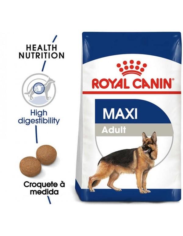 Royal Canin SHN Maxi Adult Alimento Seco Cão