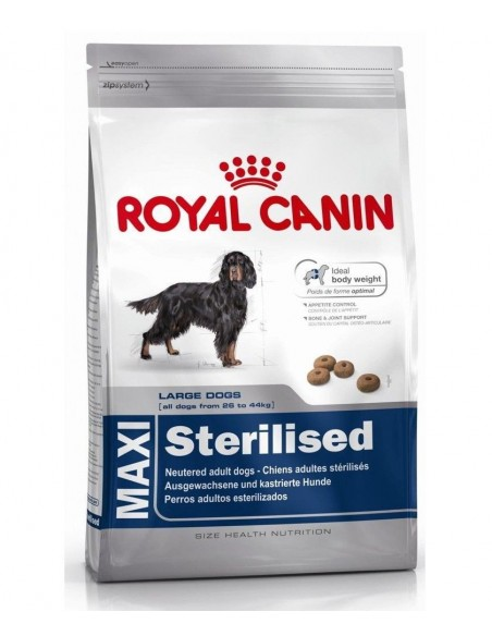 Royal Canin Size Health Nutrition Maxi Sterilised Alimento Seco Cão