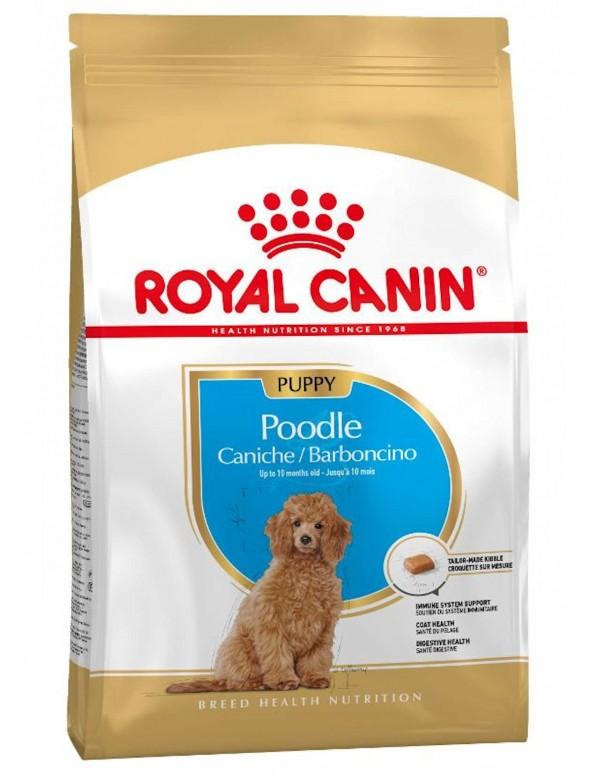Royal Canin Cão Poodle Puppy