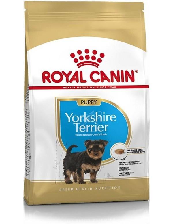 Royal Canin BHN Yorkshire Terrier Puppy