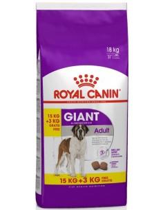 Royal Canin SHN Giant Adult Alimento Seco Cão