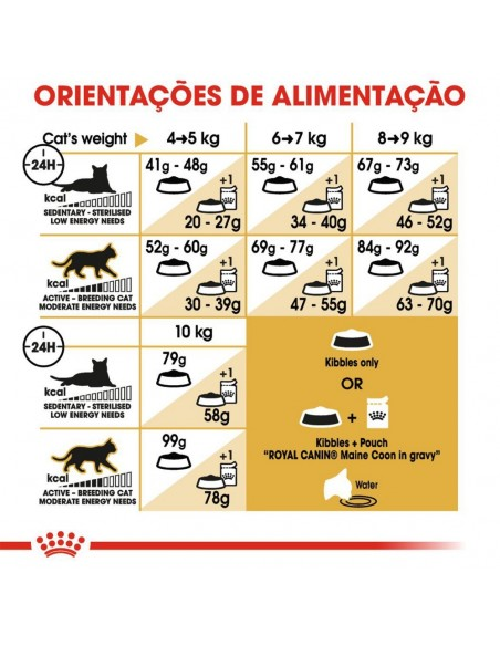 Royal Canin FBN Maine Coon Adult Alimento Seco Gato
