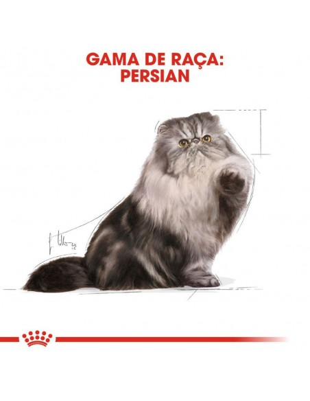 Royal Canin FBN Persian Alimento Húmido Gato Saquetas