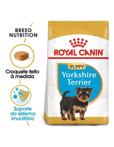 Royal Canin BHN Yorkshire Terrier Puppy Alimento Seco Cão