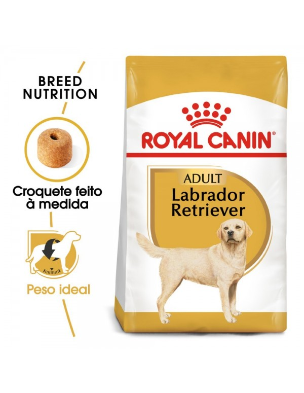 Royal Canin BHN Labrador Retriever Adult Alimento Seco Cão