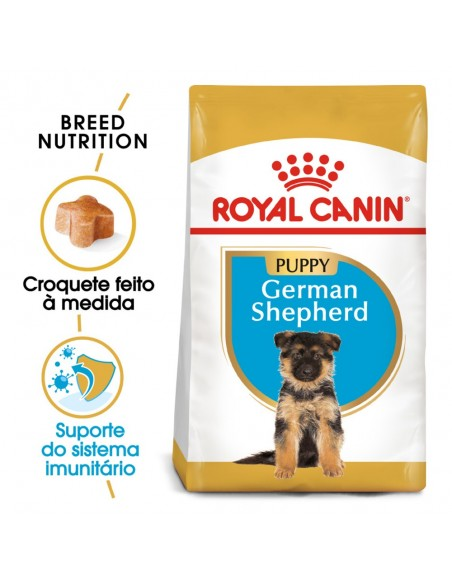 Royal Canin BHN German Shepherd Puppy Alimento Seco Cão