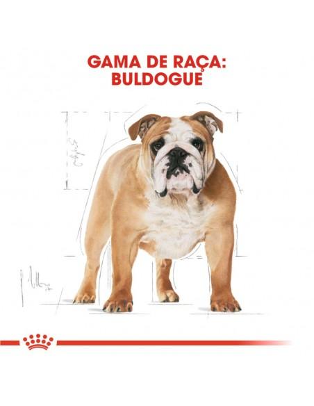 Royal Canin BHN Bulldog Adult Alimento Seco Cão