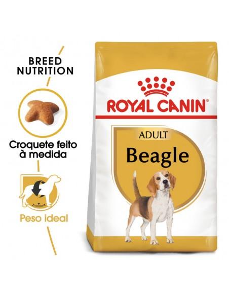 Royal Canin BHN Beagle Adult Alimento Seco Cão