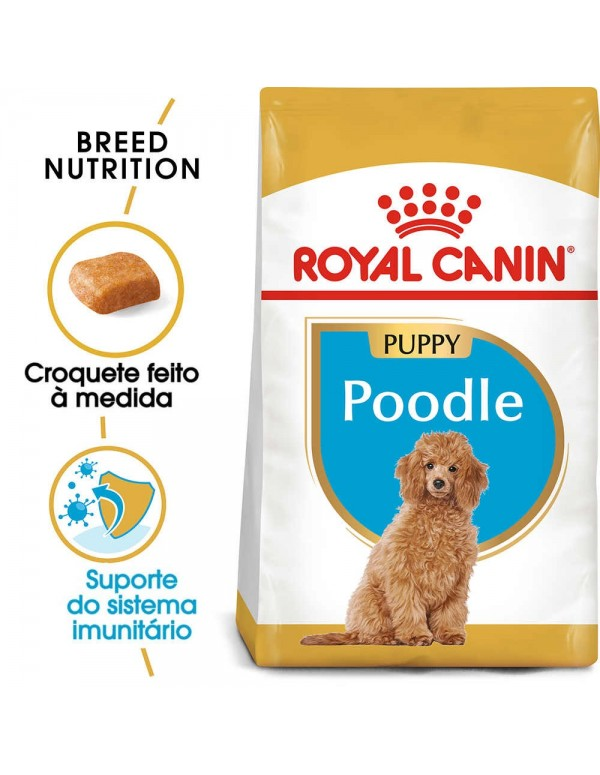 Royal Canin BHN Poodle Puppy Alimento Seco Cão