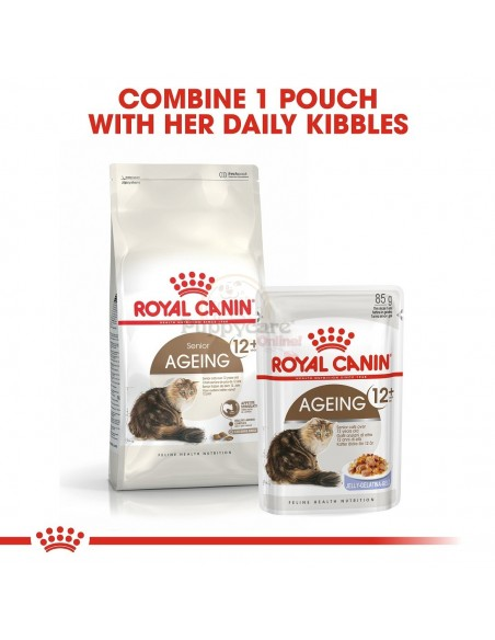 Royal Canin FHN Ageing 12+ Alimento Seco Gato
