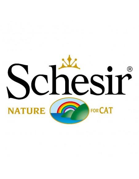 Schesir Gato